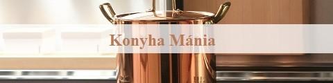 Elkészített referencia webáruház, Konyha Mánia